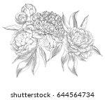 ink hand drawn illustrations of ... | Shutterstock .eps vector #644564734
