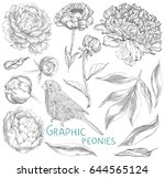 ink hand drawn illustrations of ... | Shutterstock .eps vector #644565124