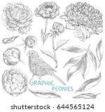 ink hand drawn illustrations of ... | Shutterstock .eps vector #644565124