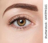 closeup of brown eye. beautiful ... | Shutterstock . vector #644594161