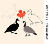Canadian Goose Vector...