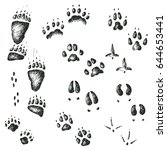 Vector Hand Drawn Set Of...