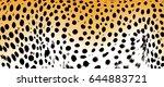 leopard pattern texture orange... | Shutterstock .eps vector #644883721