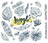 jungle leafs design elements...   Shutterstock .eps vector #644967589
