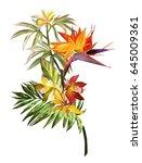 tropical watercolor flowers  ... | Shutterstock . vector #645009361