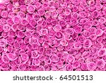 Stock photo beautiful pink rose flowers 64501513