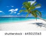 Tropical Paradise Beach With...