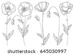 vector set with outline poppy... | Shutterstock .eps vector #645030997