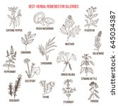 best herbal remedies for... | Shutterstock .eps vector #645034387