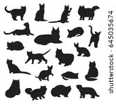 breeds of cats vector... | Shutterstock .eps vector #645035674