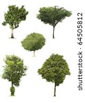 5 tree | Shutterstock . vector #64505812