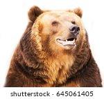smiling happy bear looks huge... | Shutterstock . vector #645061405