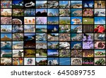 video wall concept made of a... | Shutterstock . vector #645089755