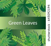 green leaves background | Shutterstock .eps vector #645092194