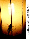 a lizard with a nightly lamp | Shutterstock . vector #645109777