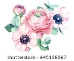 ranunculus and eucalyptus ...   Shutterstock . vector #645138367