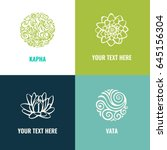 ayurveda vector illustration.... | Shutterstock .eps vector #645156304