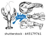 lobster hand drawn sketch style ... | Shutterstock .eps vector #645179761