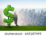 man in sustainable investment... | Shutterstock . vector #645187495