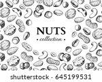 nuts vector vintage... | Shutterstock .eps vector #645199531