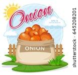 vector illustration of eco... | Shutterstock .eps vector #645208201