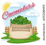 vector illustration of eco... | Shutterstock .eps vector #645208495