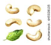cashew set. watercolor | Shutterstock . vector #645328135