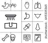 anatomy icon. set of 13 outline ... | Shutterstock .eps vector #645335365