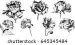 wild flowers peony  roses ...