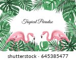 exotic tropic landscape border... | Shutterstock .eps vector #645385477