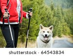 Stock photo nordic walking in autumn mountains hiking with purebred akita inu dog 64543834