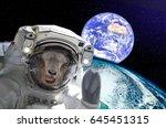 goat astronaut  showing tongue ... | Shutterstock . vector #645451315
