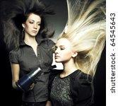 woman in a beauty salon.... | Shutterstock . vector #64545643