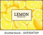 rectangular label on citrus... | Shutterstock .eps vector #645504769
