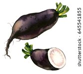 black winter radish with slices ... | Shutterstock . vector #645541855
