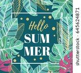 summer tropical template. label ...   Shutterstock .eps vector #645624871