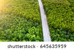 green forest and asphalt road... | Shutterstock . vector #645635959