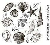 set of seashells on white... | Shutterstock .eps vector #645646435