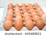 eggs | Shutterstock . vector #645680821