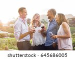 two relaxed mature couples... | Shutterstock . vector #645686005