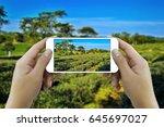 hands taking photo of tea... | Shutterstock . vector #645697027