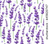 seamless pattern of provence... | Shutterstock .eps vector #645820747