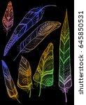 feathers set gradient vector... | Shutterstock .eps vector #645850531