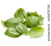 sweet basil herb leaves handful ... | Shutterstock . vector #645879739