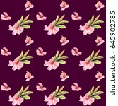 seamless pattern with... | Shutterstock . vector #645902785