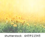 photo of a miracle retro spring ... | Shutterstock . vector #645911545