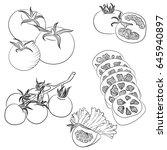 vector line art illustration... | Shutterstock .eps vector #645940897