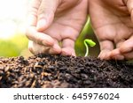 the seedlings are growing from... | Shutterstock . vector #645976024