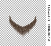 brown beard. realistic vector... | Shutterstock .eps vector #645994951