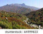 View along General's Highway in Sequoia National Park in California. - stock photo